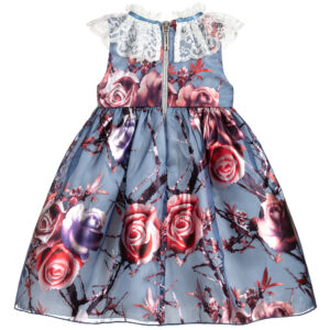 Graci Blue Organza Dress For Baby Girls 1