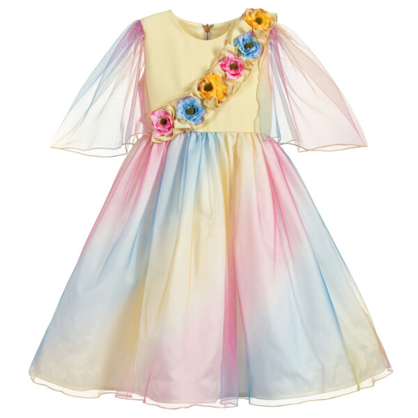 Graci Colourful Dress With Flowers